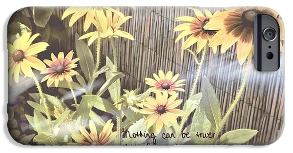 Bamboo Fence iPhone Cases - Fairy Wisdom iPhone Case by Peggy J Hughes