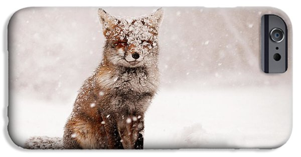 Storm Photographs iPhone Cases - Fairytale Fox _ Red Fox in a Snow Storm iPhone Case by Roeselien Raimond