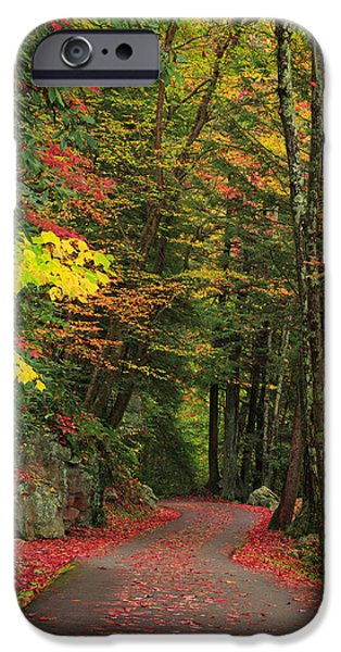 Field. Cloud iPhone Cases - Fall 6 iPhone Case by Emmanuel Panagiotakis