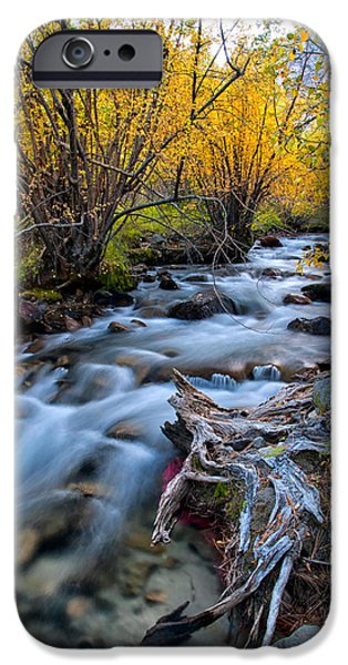 River Photographs iPhone Cases - Fall at Big Pine Creek iPhone Case by Cat Connor