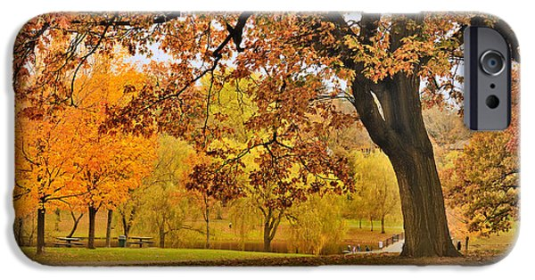 Boston Ma iPhone Cases - Fall at Larz Anderson iPhone Case by Ludmila Nayvelt