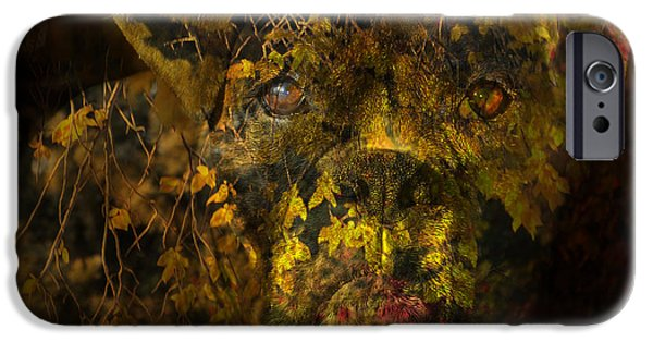 Boxer Dog iPhone Cases - Fall Boxer iPhone Case by Judy Wood