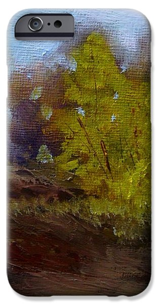 Fall Color iPhone Case by Dwayne Gresham