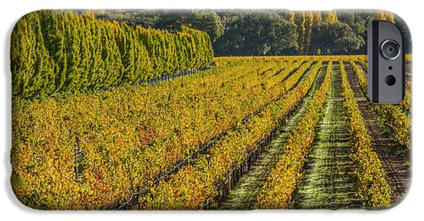 Buy iPhone Cases - Fall Color Napa Style iPhone Case by Bill Gallagher