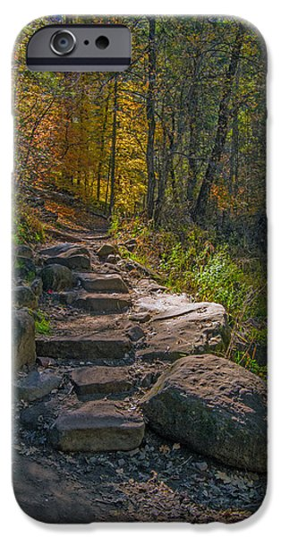 West Fork iPhone Cases - Fall Color Pathway iPhone Case by Tam Ryan