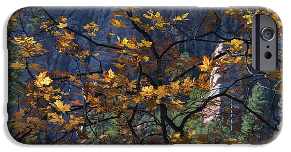 West Fork iPhone Cases - Fall Color Tapestry iPhone Case by Tam Ryan
