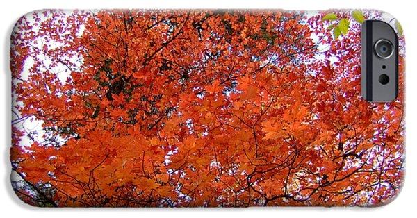 Oak Creek iPhone Cases - Fall Colors 6359 iPhone Case by En-Chuen Soo