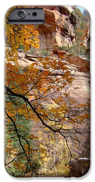 Oak Creek iPhone Cases - Fall Colors 6497 iPhone Case by En-Chuen Soo