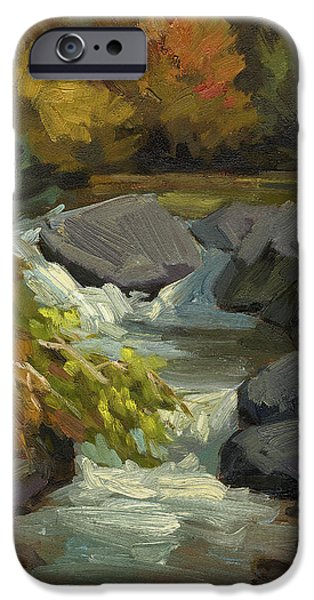 Fall iPhone Cases - Fall Colors at Bishop Creek iPhone Case by Diane McClary