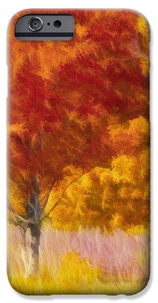 Schwartz Digital iPhone Cases - Fall Colors iPhone Case by Donald Schwartz