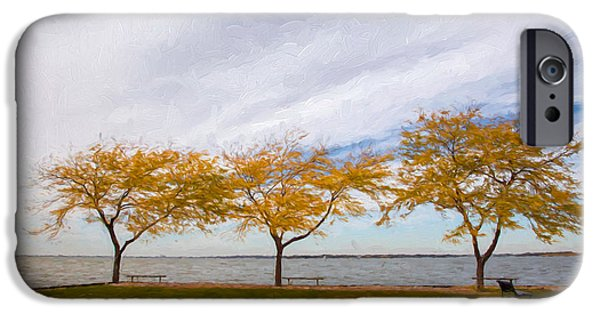 Fall iPhone Cases - Fall Colors on Lake Erie iPhone Case by John Bailey
