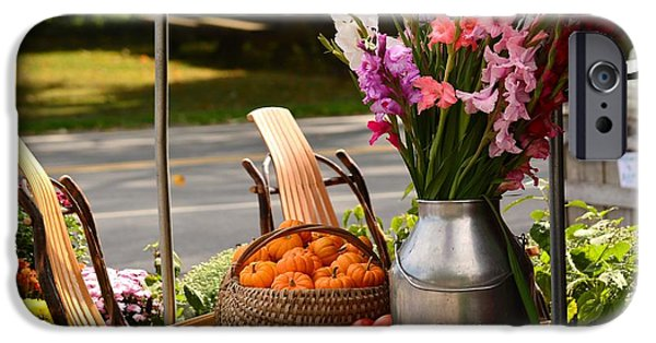 Farmstand iPhone Cases - Fall Country   iPhone Case by Judy Genovese