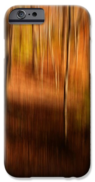 Fall Divine iPhone Case by Lourry Legarde