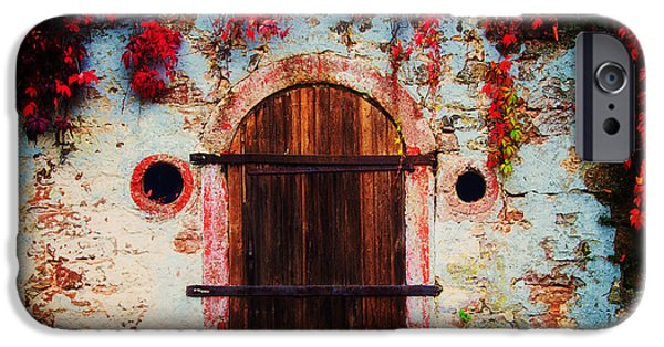 Fall Foliage iPhone Cases - Fall Door iPhone Case by Ryan Wyckoff
