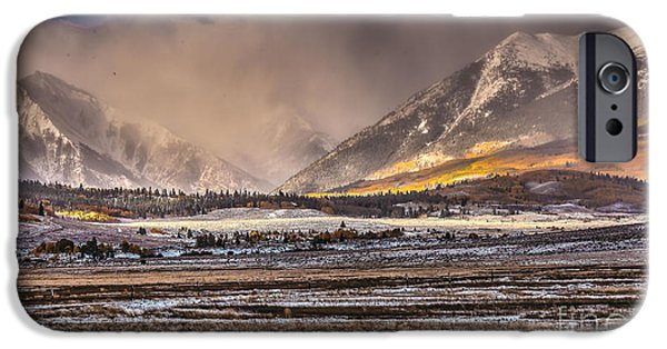 Fury iPhone Cases - Fall Fury iPhone Case by Steven Reed
