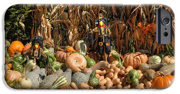 Fall Scenes iPhone Cases - Fall Harvest iPhone Case by Joann Vitali