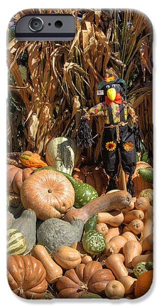 Fall Harvest iPhone Case by Joann Vitali