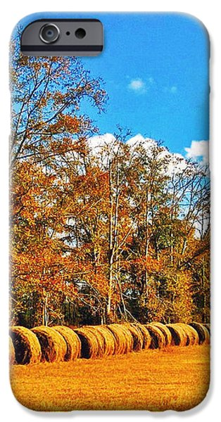 Fall Hayfield iPhone Case by M J Glisson