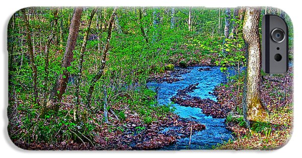 Natchez Trace Parkway iPhone Cases - Fall Hollow on Mile 391 of Natchez Trace Parkway-Tenneessee iPhone Case by Ruth Hager
