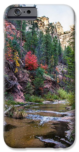 West Fork iPhone Cases - Fall in Oak Creek Canyon iPhone Case by Cory Mottice