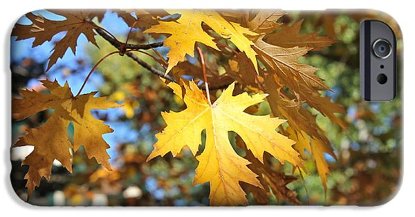 Prescott iPhone Cases - Fall in Prescott iPhone Case by Pamela Walrath