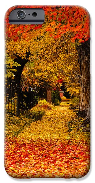 Autumn Scenes iPhone Cases - Fall in the City iPhone Case by Teri Virbickis