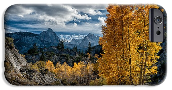 Mountain Road iPhone Cases - Fall in the Eastern Sierra iPhone Case by Cat Connor