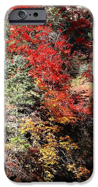West Fork iPhone Cases - Fall in the Fork iPhone Case by Dennis Swena