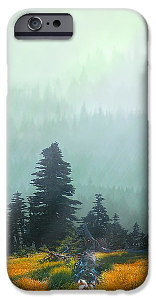 Fall in the Northwest iPhone Case by Jeff Burgess