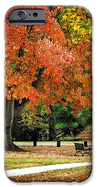 Fall In The Park iPhone Case by Christina Rollo