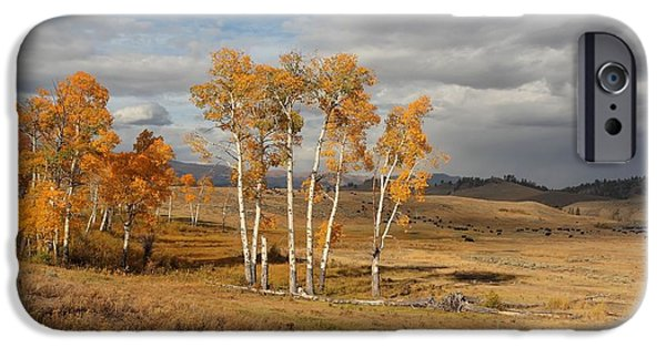 Autumn Landscape Pyrography iPhone Cases - Fall in Yellowstone iPhone Case by Daniel Behm