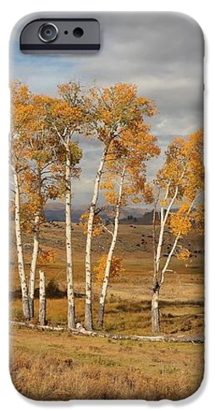 Fall in Yellowstone iPhone Case by Daniel Behm