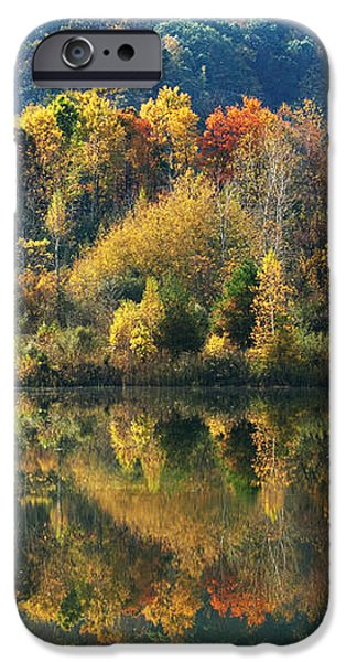 Fall Kaleidoscope iPhone Case by Christina Rollo