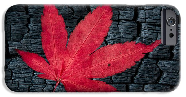 Red Leaf Digital iPhone Cases - Fall last beat iPhone Case by Eduard Moldoveanu