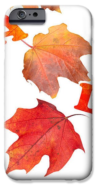 Texture iPhone Cases - Fall Leaves iPhone Case by Amanda And Christopher Elwell
