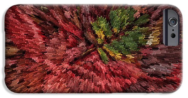 Autumn iPhone Cases - Fall leaves  iPhone Case by John Farnan