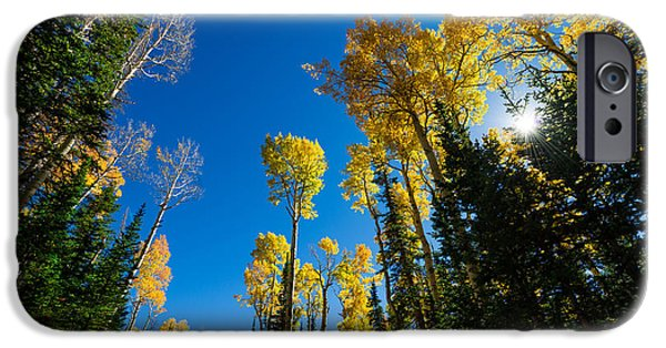 Fall Season iPhone Cases - Fall Light iPhone Case by Chad Dutson