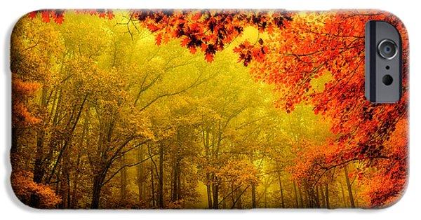 Paint Photograph iPhone Cases - Fall on Steroids - Blue Ridge Parkway iPhone Case by Dan Carmichael