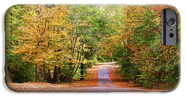 Willow Lake iPhone Cases - Fall Pathway iPhone Case by Judy Vincent