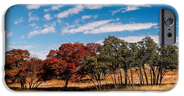 Oak Creek iPhone Cases - Fall Scene in the Texas Hill Country - Reimers Ranch Hamilton Pool Road - Texas iPhone Case by Silvio Ligutti