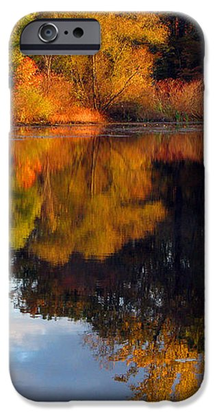Fall Scene iPhone Case by Olivier Le Queinec