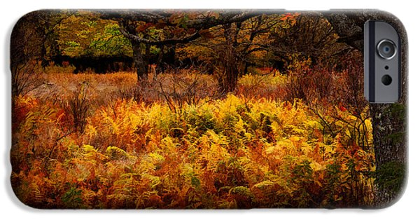 Sod iPhone Cases - Fall Shadows - Dolly Sods West Virginia iPhone Case by Dan Carmichael