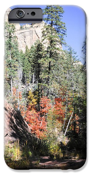 West Fork iPhone Cases - Fall iPhone Case by Shannon Hastings