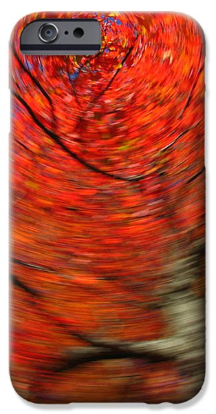 Fall Tree Carousel iPhone Case by Juergen Roth