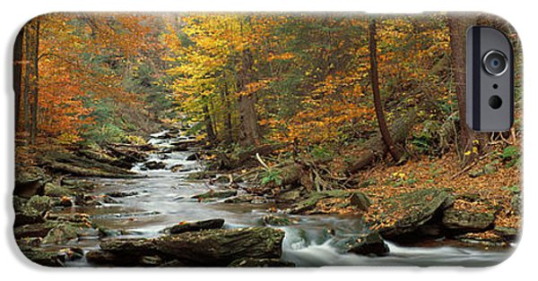 Overcast Day iPhone Cases - Fall Trees Kitchen Creek Pa iPhone Case by Panoramic Images