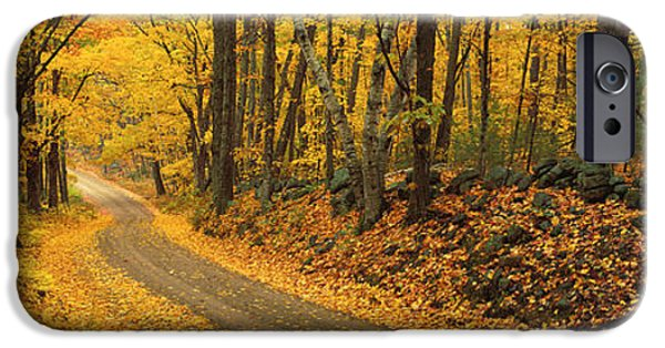 Autumn Road iPhone Cases - Fall Woods Monadnock Nh Usa iPhone Case by Panoramic Images