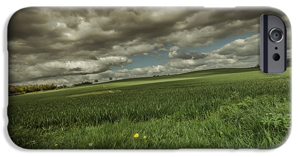 Agriculture iPhone Cases - Fallen iPhone Case by Chris Fletcher
