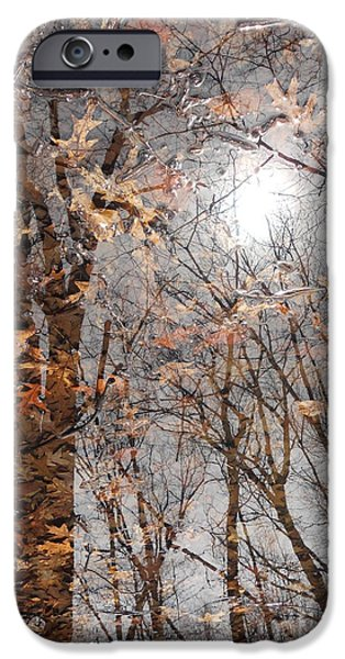 United States iPhone Cases - Fallen iPhone Case by Don Teramano