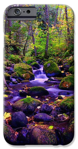 River View iPhone Cases - Fallen Leaves On The Rocks iPhone Case by Jeff  Swan