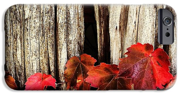 Fall iPhone Cases - Falls approach iPhone Case by Jeff Klingler